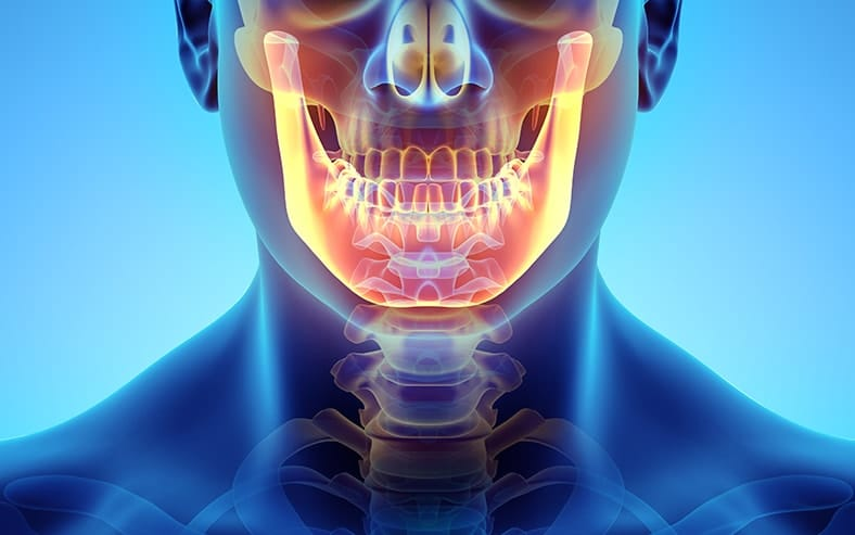 Diet Not Major Factor in Jaw Strength